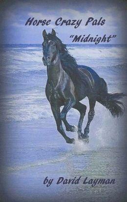 Crazy Horse Pals: Midnight
