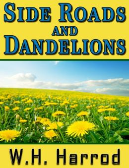 Side Roads and Dandelions