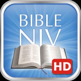 Bible Verses NIV