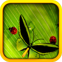 Butterflies & Ladybugs Live Wallpaper