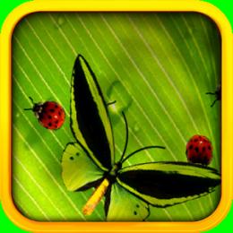 Butterflies & Ladybugs Live Wallpaper