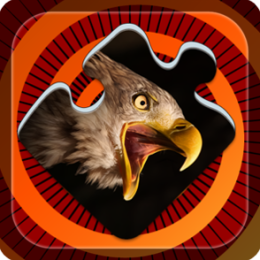 Magic Puzzles: Rare Birds