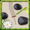 Zen Garden Live Wallpaper!