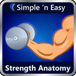 Strength Anatomy by WAGmob