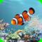 aniPet Marine Aquarium