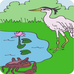 Heron and the Crab