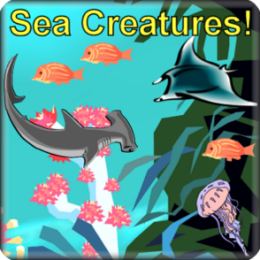 Sea Creatures! Talking Flashcards For Toddlers