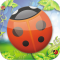 LadyBug POP Fun Brain Game