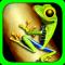 Toxic Frog