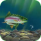 Rainbow Trout Live Wallpaper