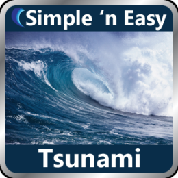 Tsunami by WAGmob