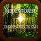 Hidden Forest : a hidden objects game