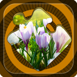Magic Puzzles: First Day Of Spring