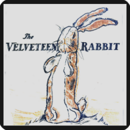 VelveteenRabbit