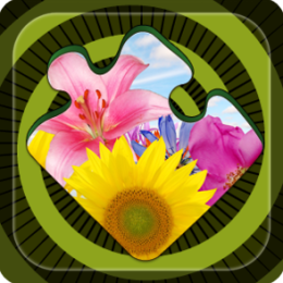 Magic Puzzles: Flowers