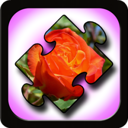 Flower Puzzles for Kids