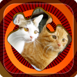 Magic Puzzles: Funny Cats