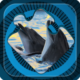 Magic Puzzles: Dolphins & Whales