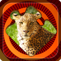 Magic Puzzles: Wild Nature
