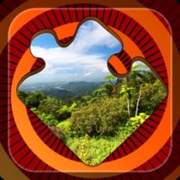 Magic Puzzles: Rain Forests