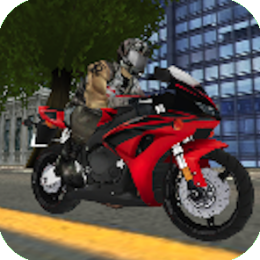 Extreme Biking 3D Racing