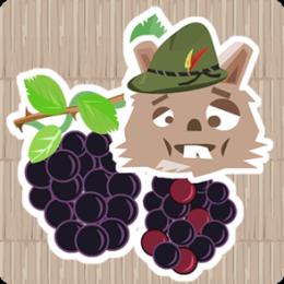 Black Berry Picker