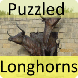Puzzled Longhorns