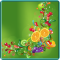 Fruit Splash HD Live Wallpaper