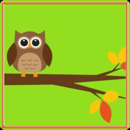 Baby Owls HD Live Wallpaper