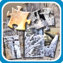 Winter Landscape Jigsaw and Slider