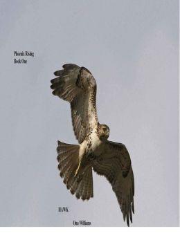 Phoenix Rising Book One Hawk