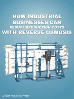 How Industrial Businesses Can Reduce Production Costs With Reverse Osmosis: Industrial Reverse Osmosis
