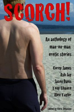 Scorch! A Collection of MM Erotic Short Stories