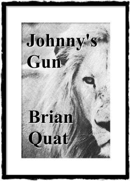 Johnny's Gun