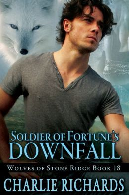 Soldier of Fortune's Downfall