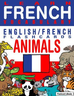how to learn french vocabulary fast