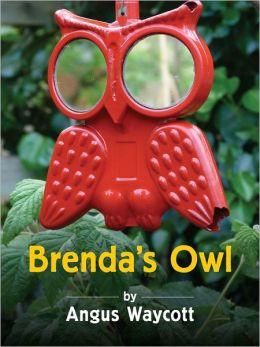 Brenda's Owl