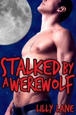 Stalked by a Werewolf (Romantic Werewolf Breeding Erotica)