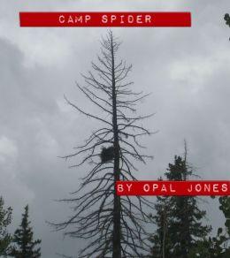 Camp Spider