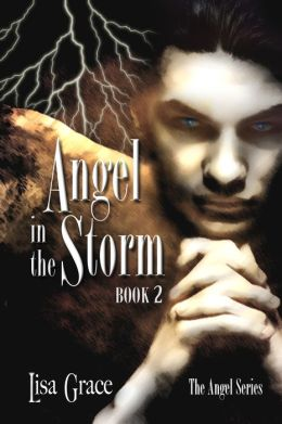 Angel in the Storm, Book 2 by Lisa Grace (Angel Series)