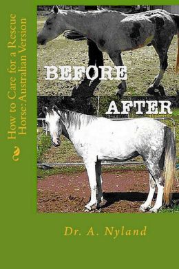How to Care for a Rescue Horse: Australian Version