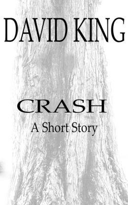 Crash: A Short Story