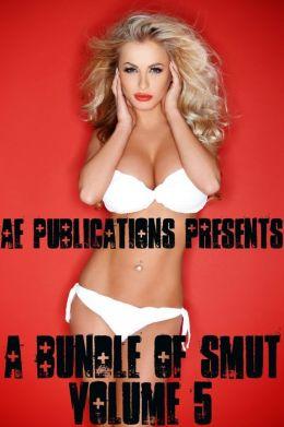 A Bundle Of Smut: Volume Five