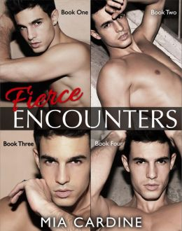 Fierce Encounters Series (Contemporary Romance) Complete Collection