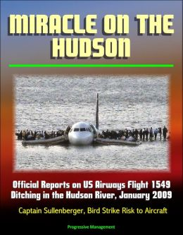 Miracle on the Hudson: Official Reports on US Airways Flight 1549 Ditching in the Hudson River, January 2009, Captain Sullenberger, Bird Strike Risk to Aircraft