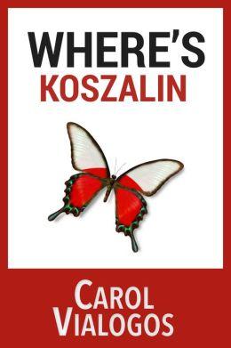 Where's Koszalin? Teaching English Abroad