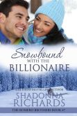 Book Cover Image. Title: Snowbound with the Billionaire (The Romero Brothers, #7), Author: Shadonna Richards