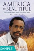 America the Beautiful: Rediscovering What Made This Nation Great (SAMPLE)