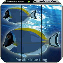 Magic Slide Puzzle - Aquarium Fishes 2