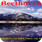 DigitalMusic - Beethoven Symphony No. 5 in C Minor, Op. 67 (Complete Music Album)